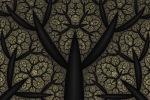 Dark Undergrowth